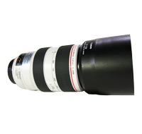 Canon EF 70-300mm F4-5.6L IS Zoom